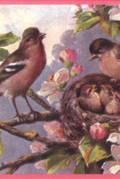 Kaart (enkel) Vogels en nest, glitter 10,5x15cm