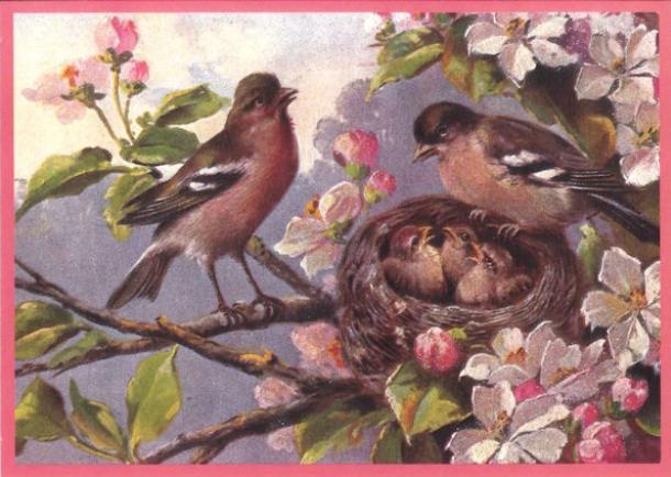 Kaart (enkel) Vogels en nest, glitter 10,5x15cm-1