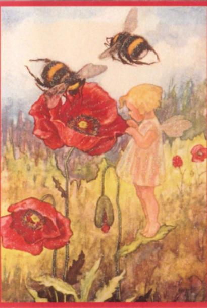 Kaart (enkel) Meisje met papaver glitter 11x15,5cm