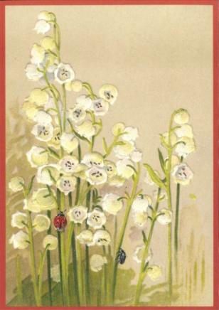 Kaart (enkel) Lelietje der dalen met lieveheersbeest 10,5x15cm-1