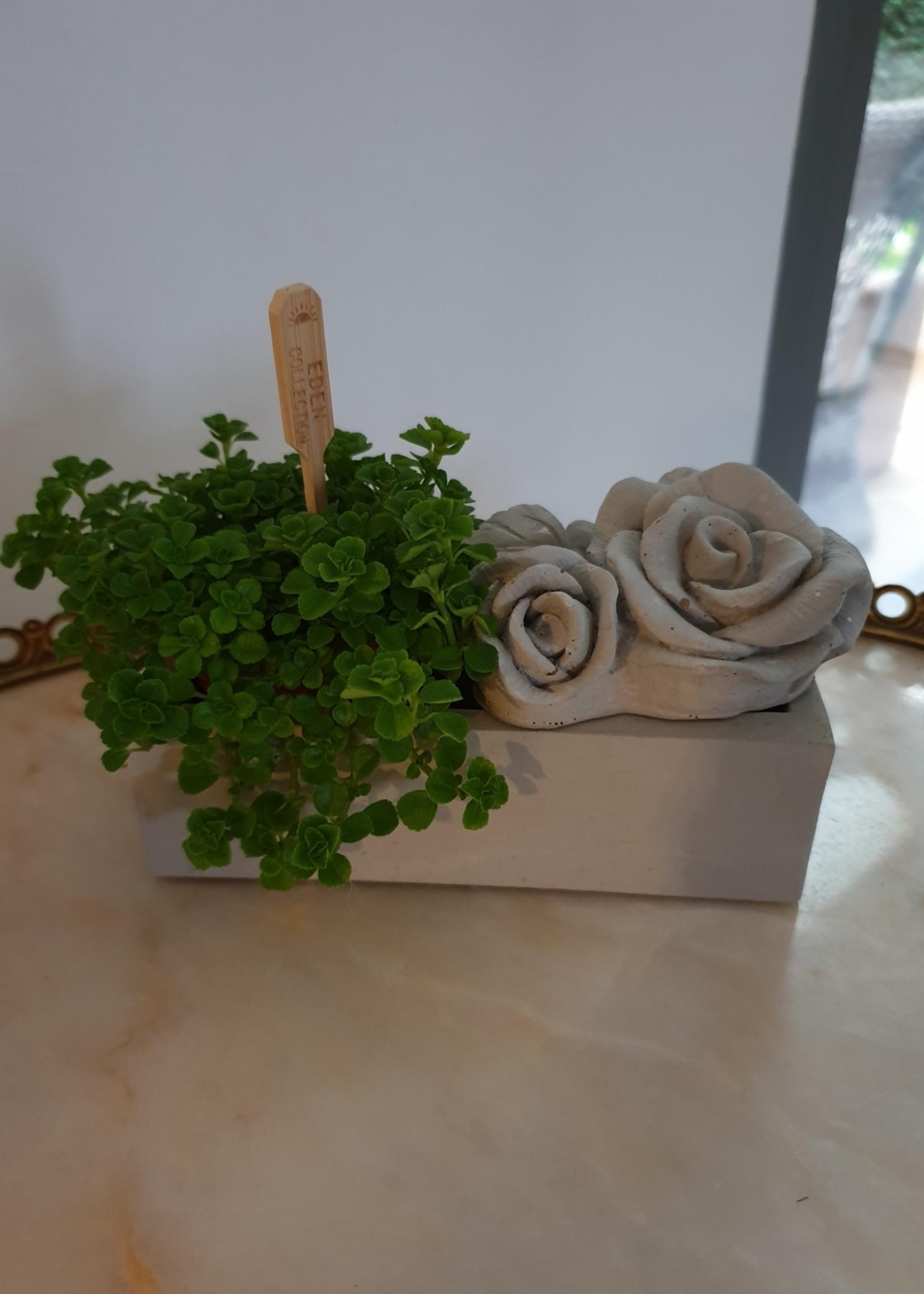 Betonnen Rozen ornament klein
