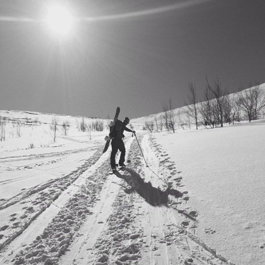 Simen • Freeride Snowboard