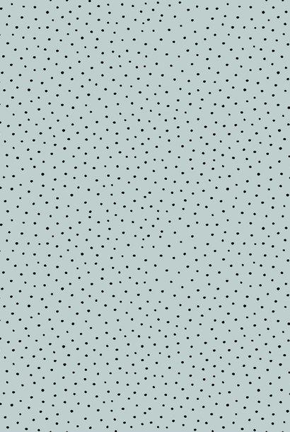 Cotton Slub - Washed - Light Blue