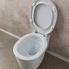 BUCKET Wand WC Clean Flush