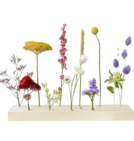 Blooming by Flinde Flower stand XL