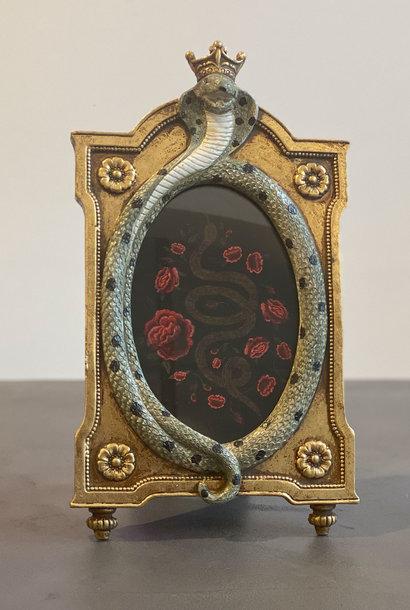 Photo frame snake