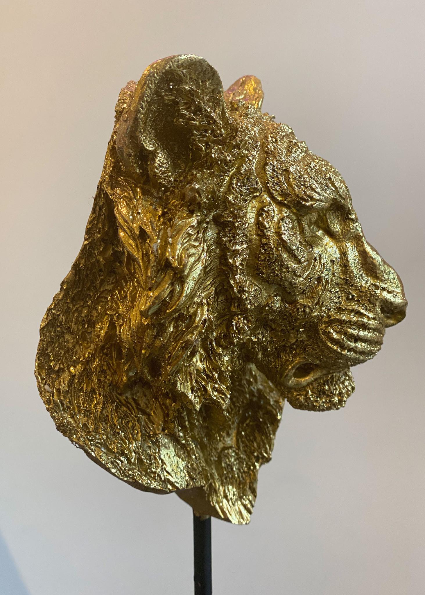 Leeuw Standaard Goud-4