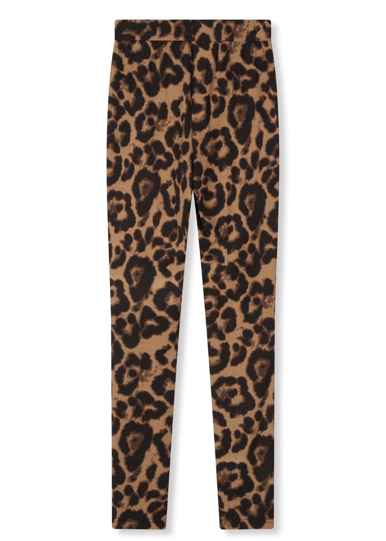 Leopard Legging-4