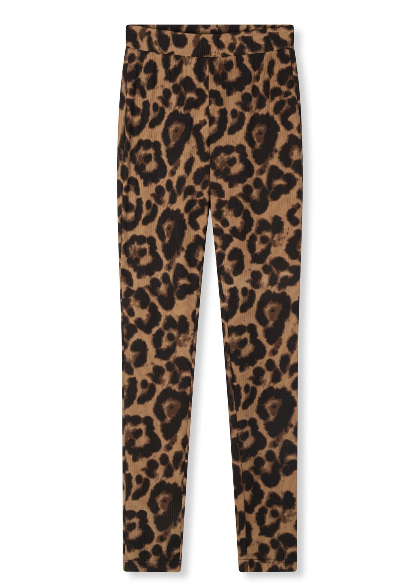 Leopard Legging-5