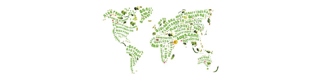 impact voor een leefbare wereld