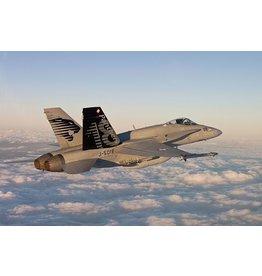 McDonnell Douglas F/A-18 C Falcons Staffel 18