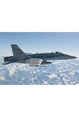 McDonnell Douglas F/A-18 C Falcons Staffel 17.