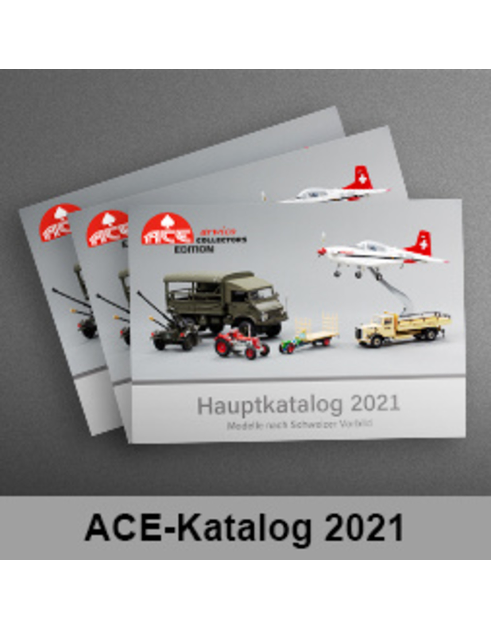 Accessories ACE/ARWICO KATALOGUS 2021