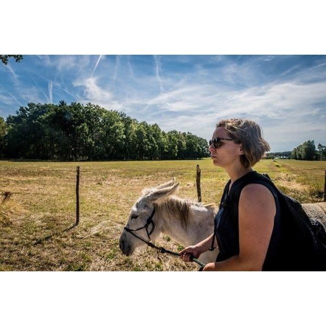 De vliertuin Beleefbon ezelwandeling 1 uur 2 ezels