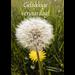 De vliertuin Wenskaart 'Gelukkige verjaardag'