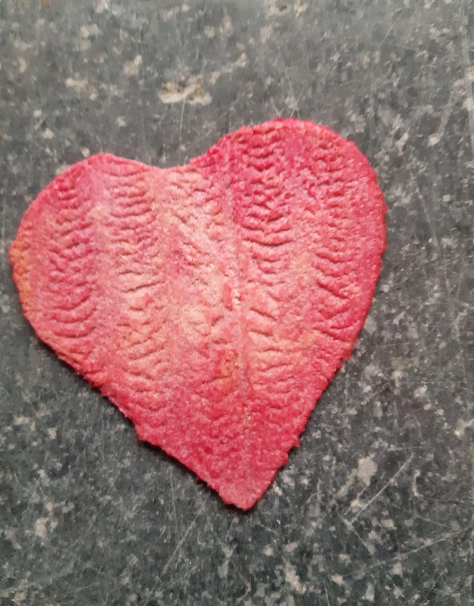 Vanhellemont Appelchips Valentijn
