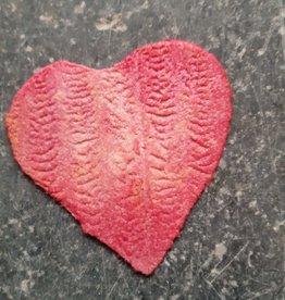 Hof Ter Vrijlegem Appelchips Valentijn