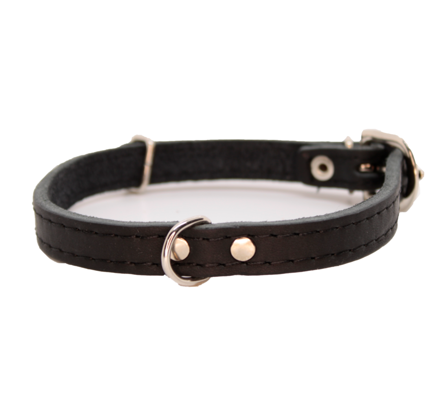 Collier pour chien GREASED LEATHER BLACK