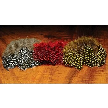 Orvis Guinea Feathers