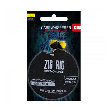 Carp Whisperer Zig Rig