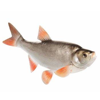 Fish Replica's Voorn