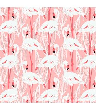 Katia Fabrics Canvas ecru - flamingo's