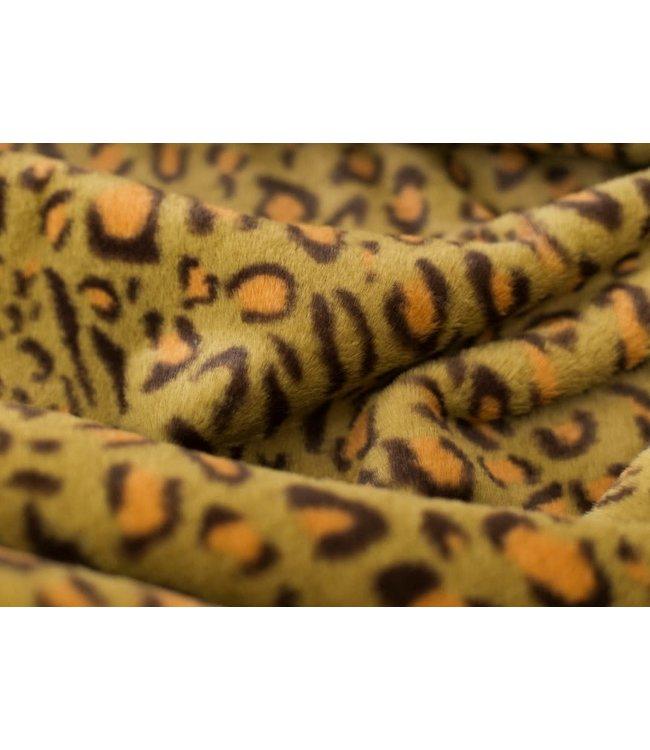 Bontje - leopard