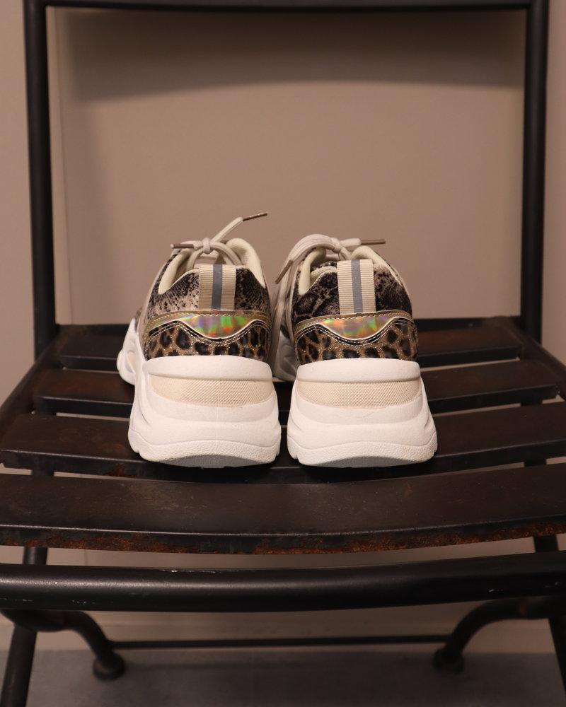 sneaker panter