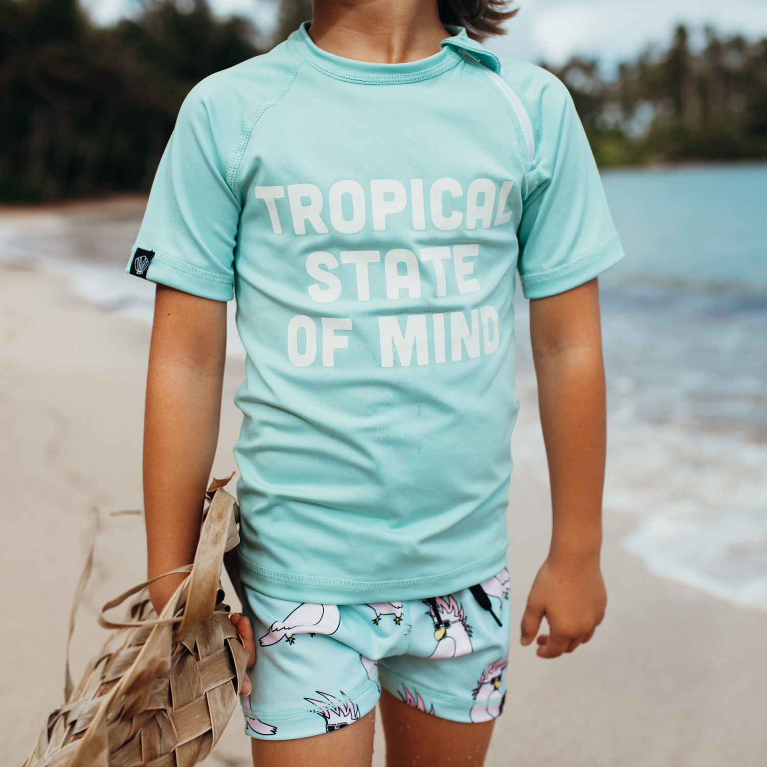 TROPICAL STATE OF MIND-2