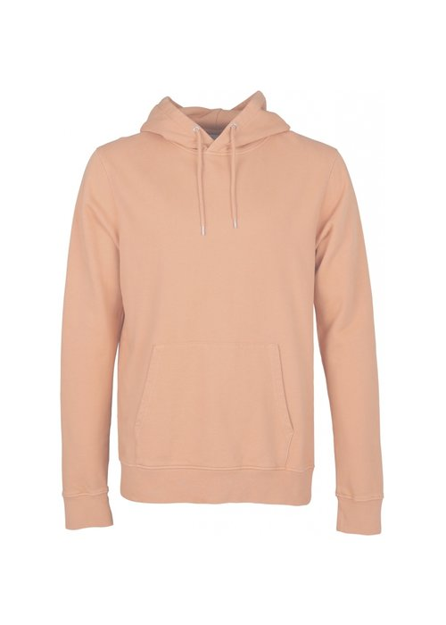 COLORFUL STANDARD Colorful Standard Organic Cotton Hoodie
