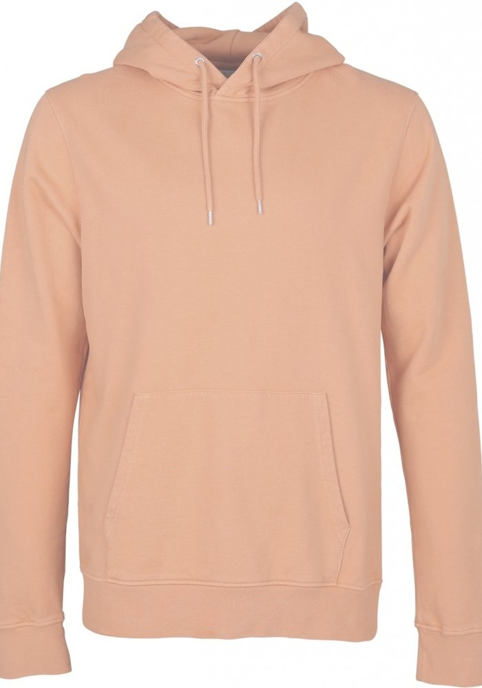 Colorful Standard Organic Cotton Hoodie