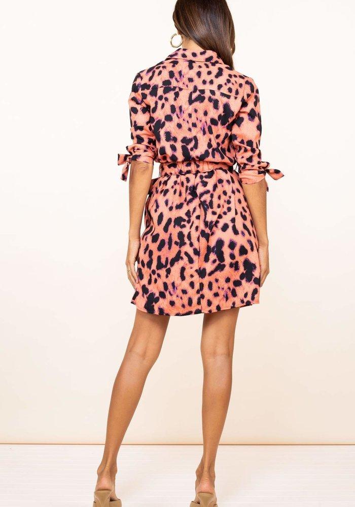 Dancing Leopard Jonah Mini Shirt Dress