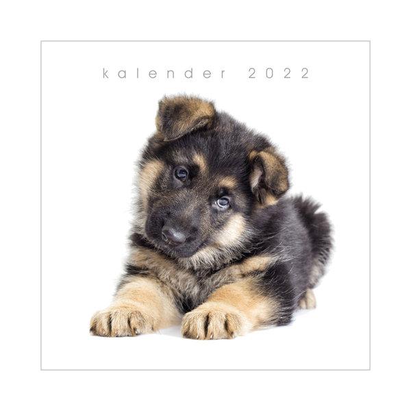 Jaarkalender Honden 2022