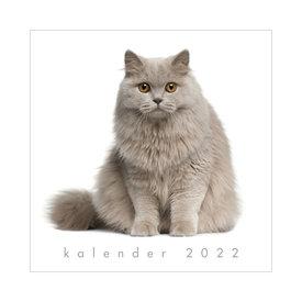 Jaarkalender Katten 2022