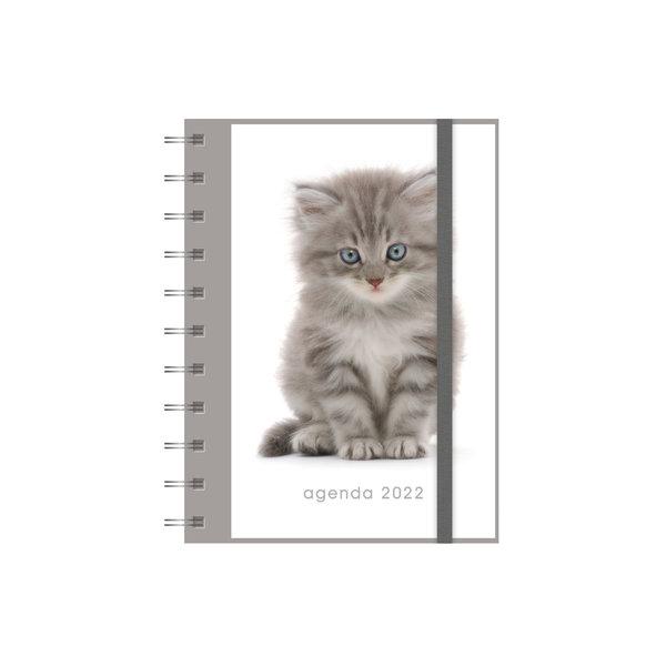 Agenda Spiraal A6 Katten 2022