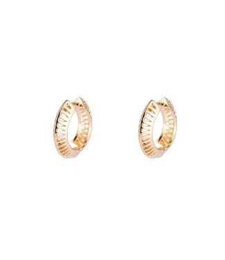 Small Round Hoop Plated earhoop - Gold