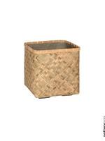 Potterypots Kobe M Bamboo