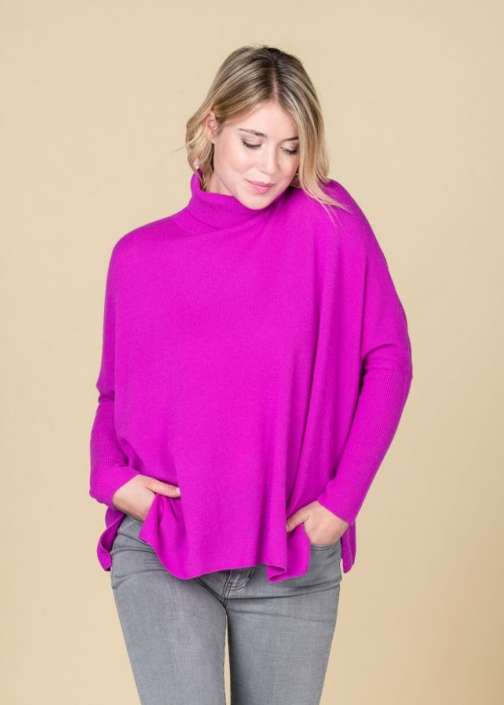 Absolut Cashmere Clara Turtleneck Sweater