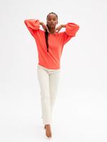 Absolut Cashmere Jade Sweater