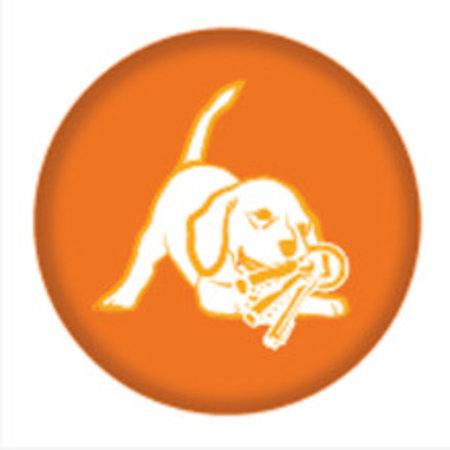 Nylabone Puppy Chew Bone maat L