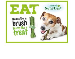 Nutri Dent Snacks