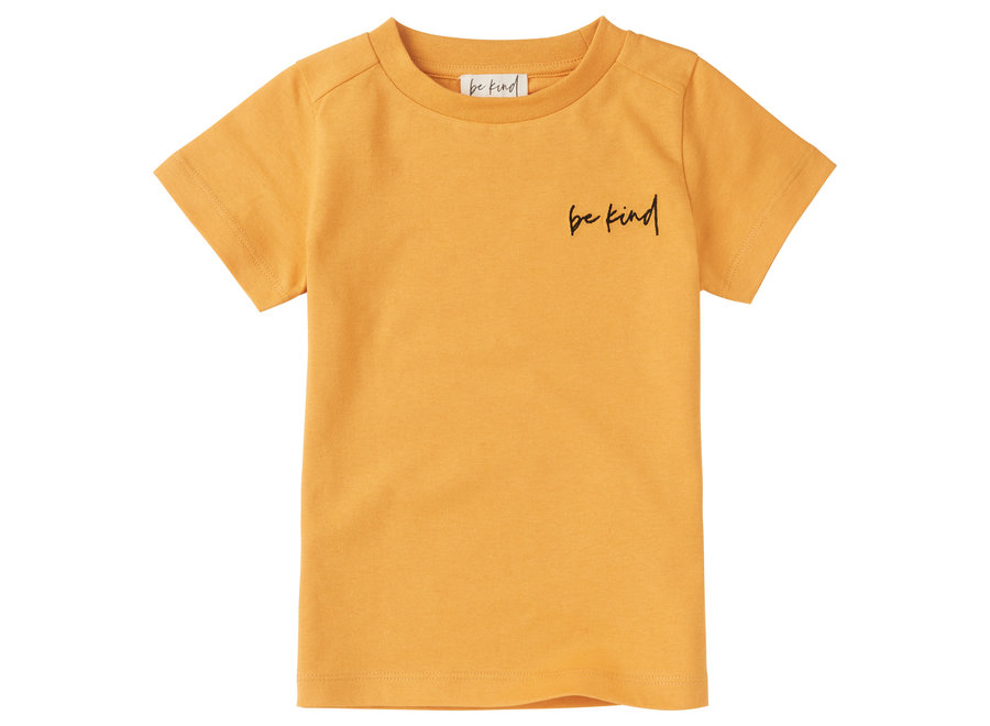 Shine as Gold - T-shirt | recycled and organic