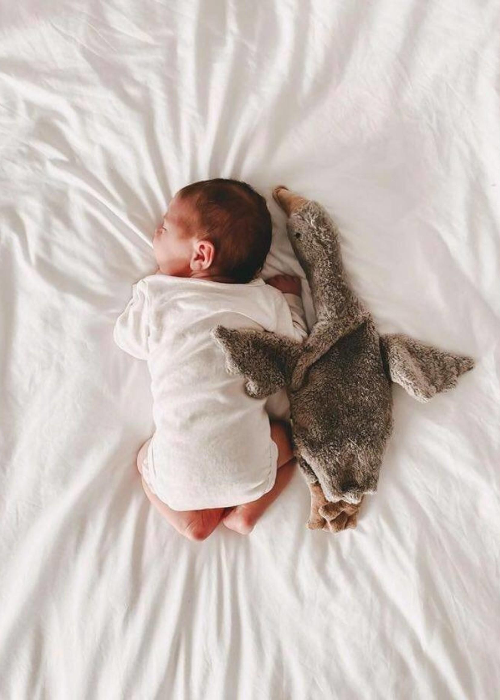 Senger Naturwelt Organic Cuddly Goose - Small - Grey