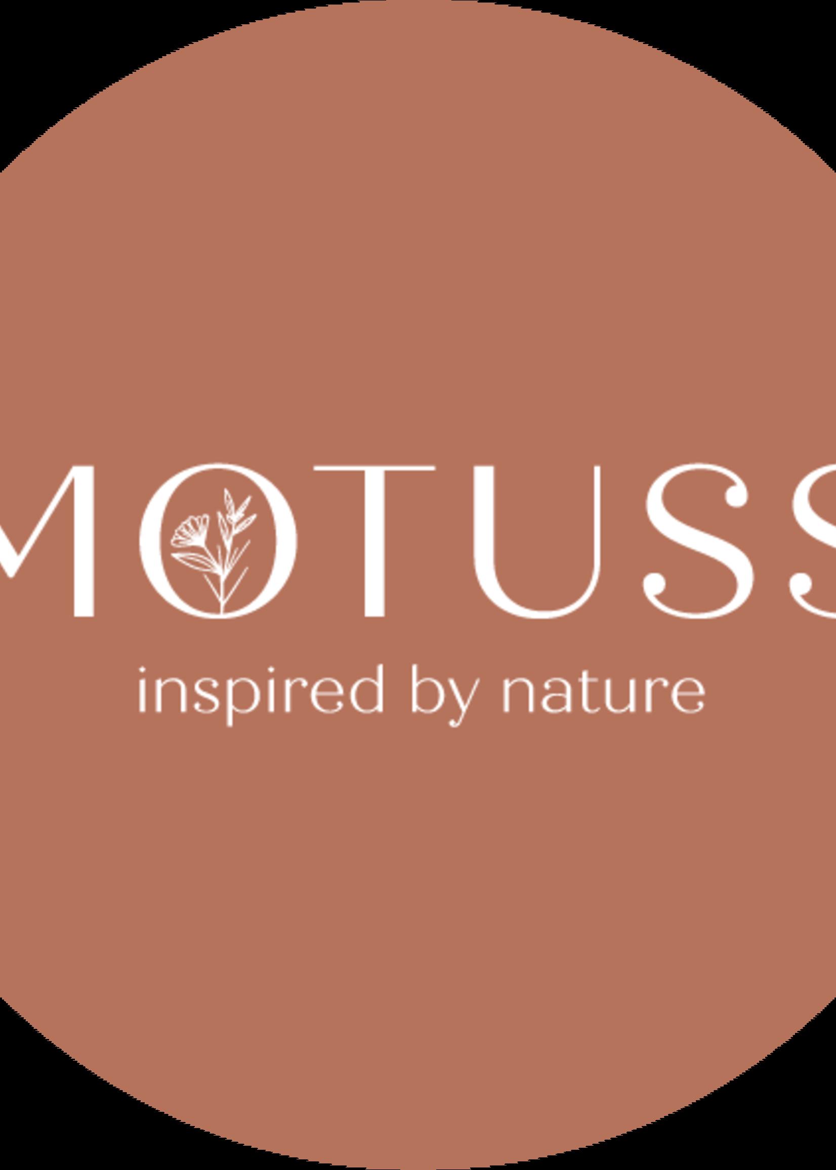 Giftcard Motuss - Pantai Luar