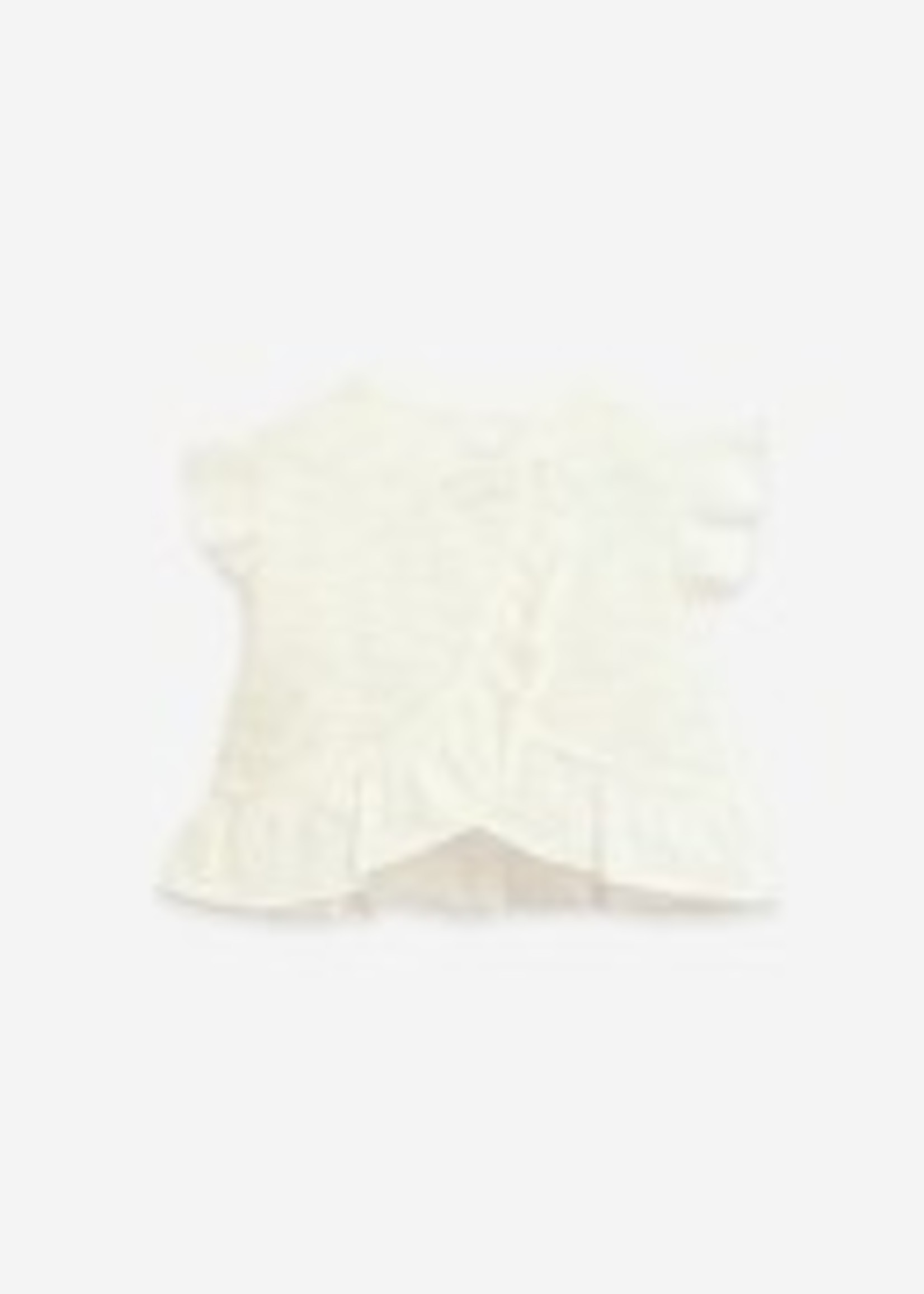 Play Up T-shirt With Ruffles - Windflower