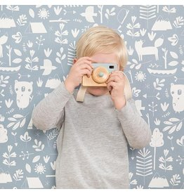 Little Dutch Fototoestel