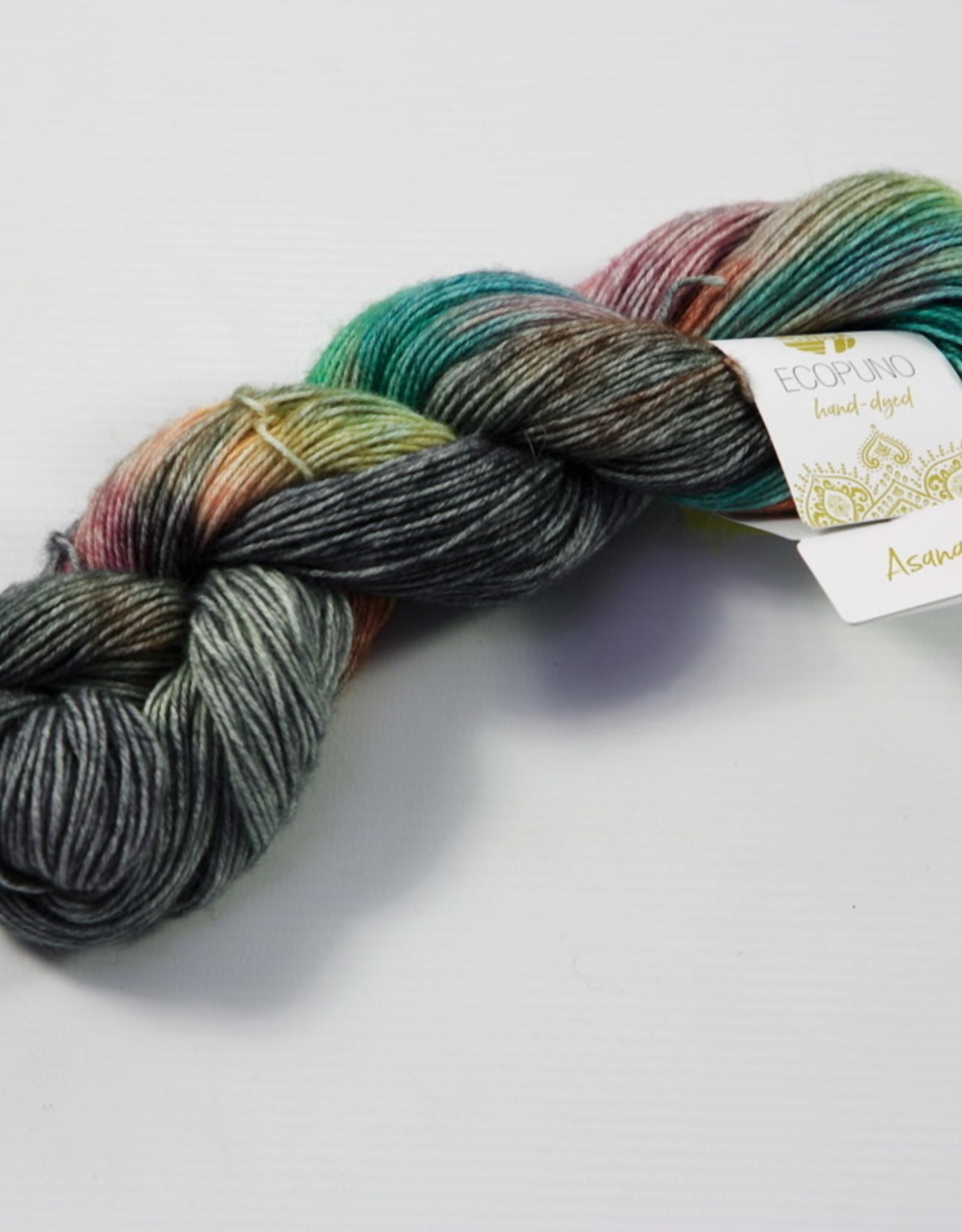 Lana Grossa Ecopuno Hand-Dyed 505