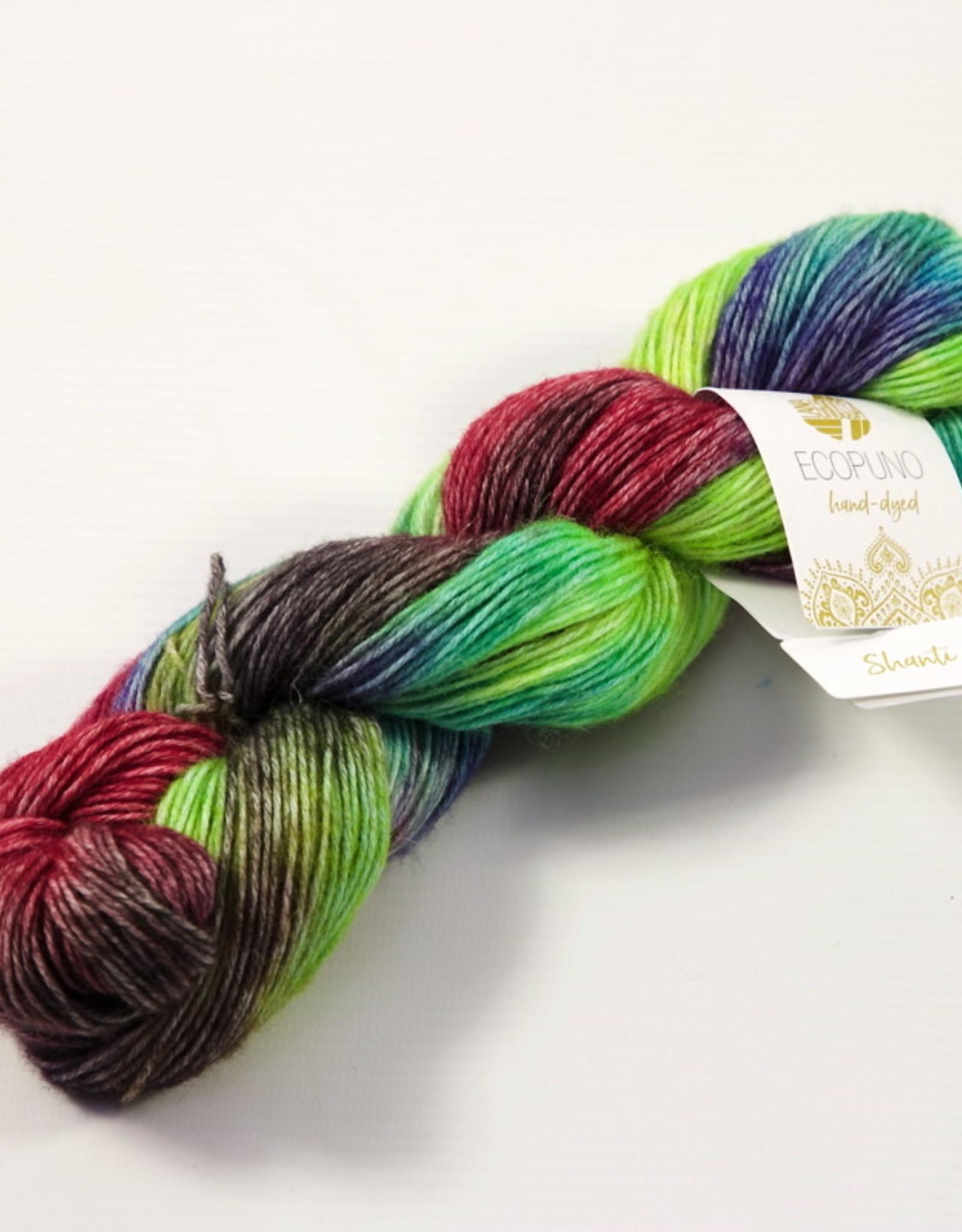 Lana Grossa Ecopuno Hand-Dyed 502