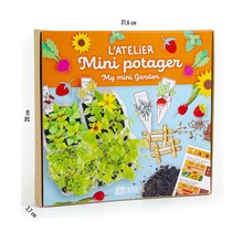 Mini Vegetable Garden Box