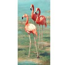Flamingo's - DIY verf op nummer kit